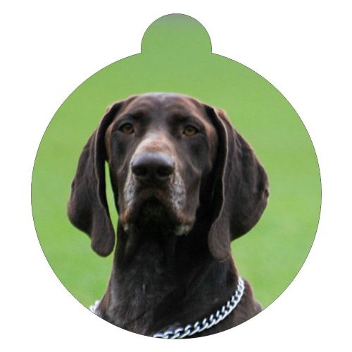 German Shorthaired Pointer Picture ID tag